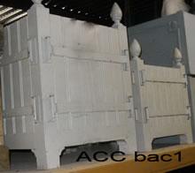 ACC BAC1