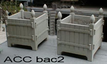 ACC BAC2