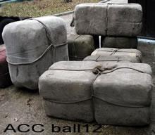 ACC BALL12