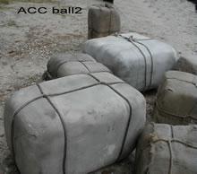 ACC BALL2