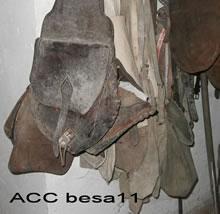 ACC BESA11