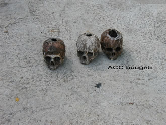 ACC BOUGE5