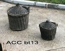 ACC BT13