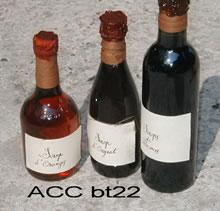 ACC BT22