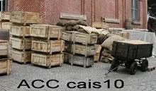 ACC CAIS10