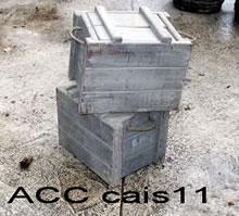 ACC CAIS11