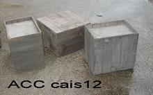 ACC CAIS12