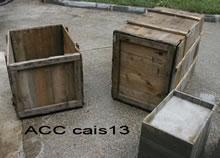 ACC CAIS13