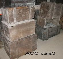 ACC CAIS3