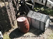 ACC CAIS8