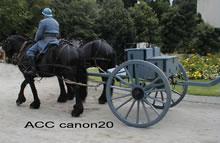 ACC CANON20