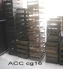 ACC CG16