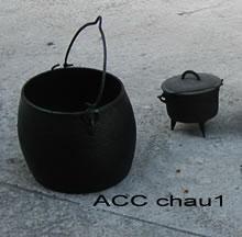 ACC CHAU1