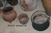 ACC CHAU12