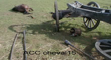 ACC CHEVAL15