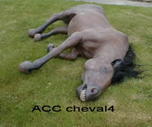 ACC CHEVAL4