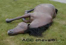ACC CHEVAL6