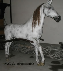 ACC CHEVAL9