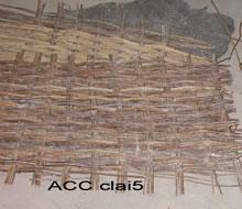 ACC CLAI5