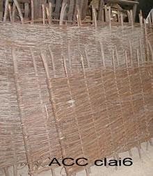 ACC CLAI6