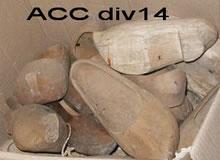 ACC DIV14