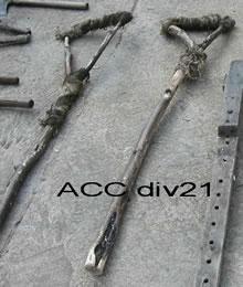 ACC DIV21