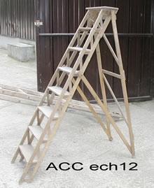 ACC ECH12