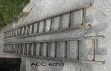 ACC ECH3