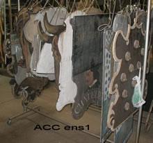 ACC ENS1