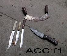 ACC F1