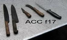 ACC F17