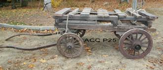 ACC P25
