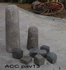 ACC PAV13