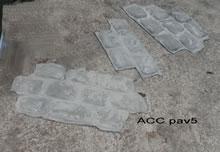 ACC PAV5