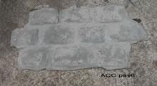 ACC PAV6