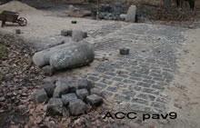 ACC PAV9