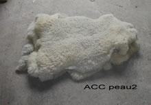 ACC PEAU2