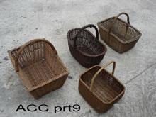ACC PRT9
