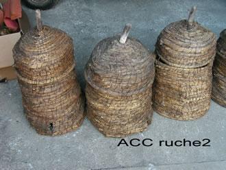 ACC RUCHE2