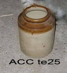 ACC TE25