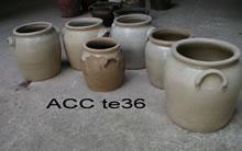 ACC TE36