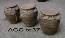 ACC TE37