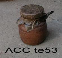 ACC TE53