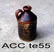 ACC TE55