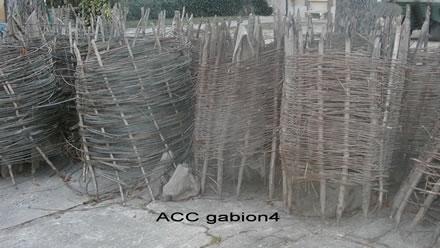 ACCGABION4