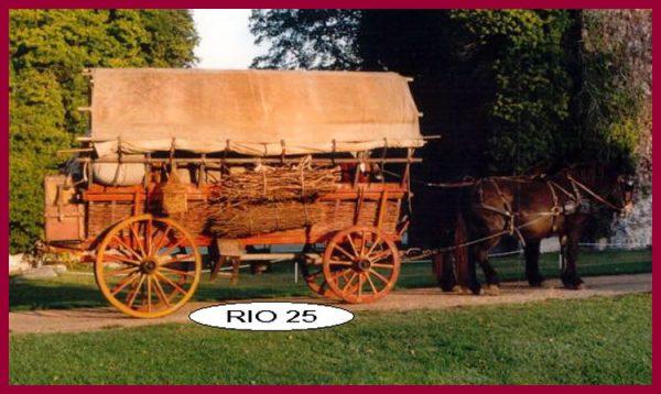 RIO25